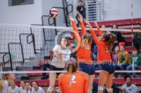 Gallery: Volleyball Eastside Catholic @ Roosevelt